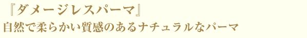 『ダメージレスパーマ』自然で柔らかい質感のあるナチュラルなパーマ